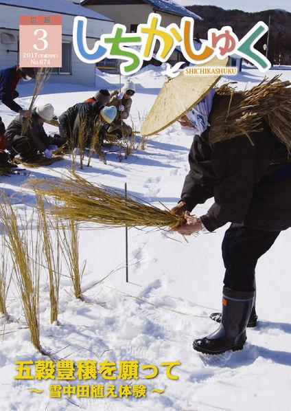 五穀豊穣を願って ~雪中田植え体験~